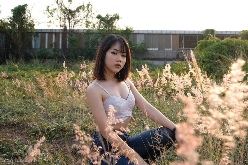 review lens fuji xf10-24mm f4
