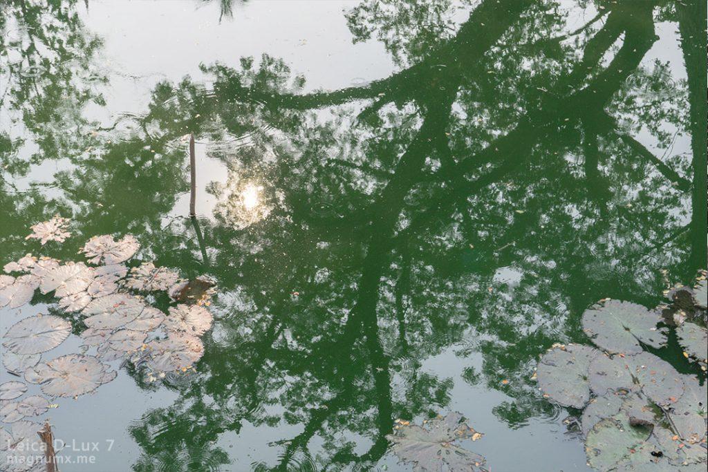 พรีเซ็ตโทน Nature Green